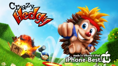 Crazy Hedgy – the secret of the candy world [2.26] [ipa/iPhone/iPod Touch/iPad]